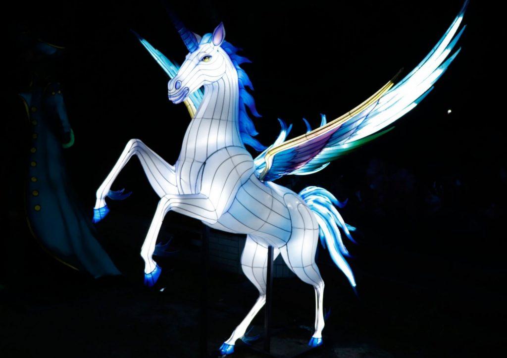 Magische Lichterwelten Artikelbild 2